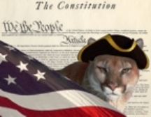constitution puma small